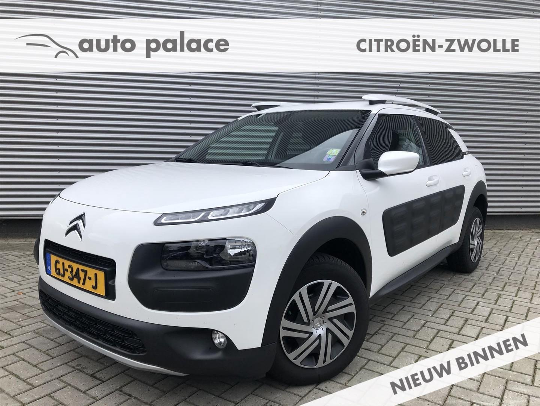 Citroën C4 cactus Bluehdi 100 business