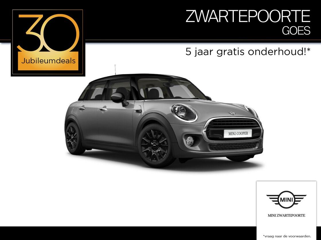 Mini 5 drs 1.5 cooper pepper business