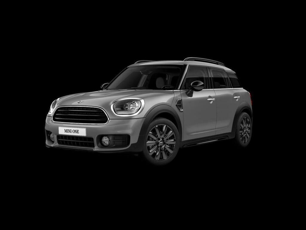 Mini Countryman One business