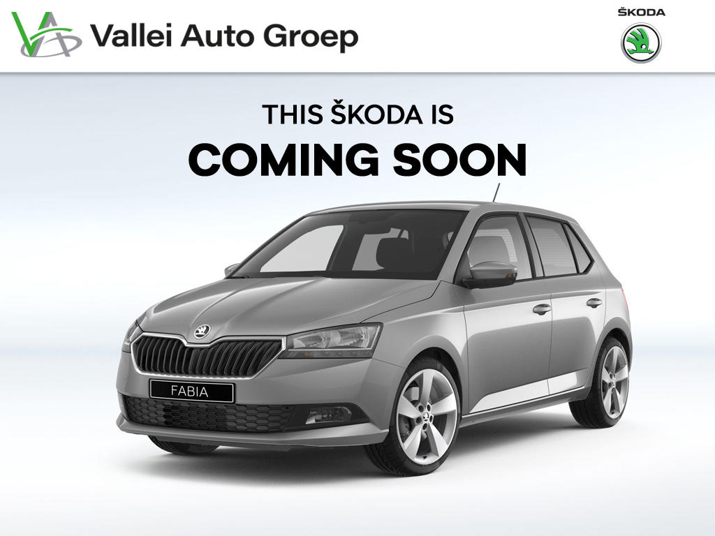 Škoda Fabia 1.0 75pk business edition