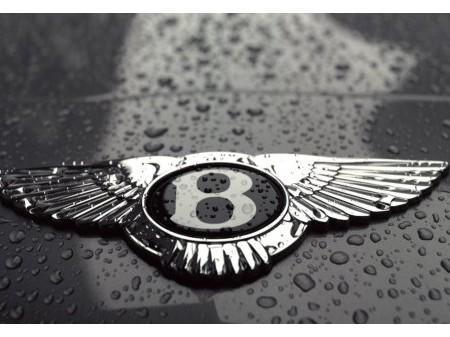 Bentley Continental gtc 6.0 w12 2 de eigenaar!!
